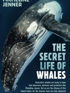 The Secret Life of Whales by Micheline Jenner